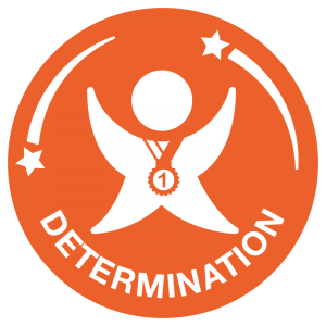 School Games - SOTG DETERMINATION icon NEW