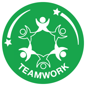 School Games - SOTG TEAMWORK icon